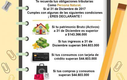 Plantilla consulta declarantes renta 2017